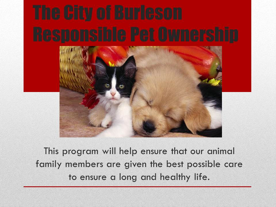 Responsible Pet Ownership 6-11-14.jpg