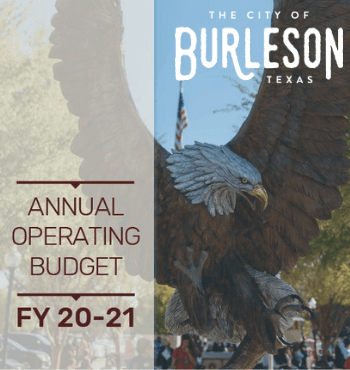 FY 20-21 Annual Budget