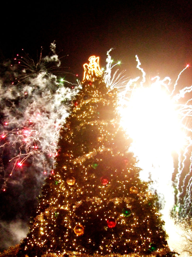 photo of christmas tree and fireworks